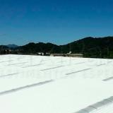 tinta térmica externa Rio Verde